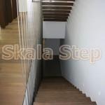 Isies&Goniakes-Isv&Skalastep (8)